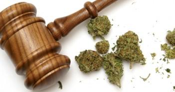 marijuana-and-the-courts-amendment-2-351x185.jpg