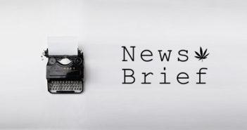 NewsBriefs_B-1-351x185.jpg