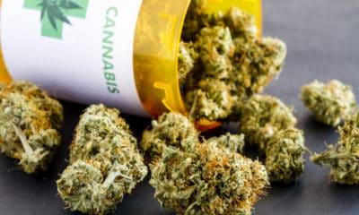 canadian-veterans-plan-lawsuit-medical-marijuana-funding-cuts-hero-400x240.jpg
