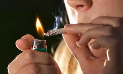 new-zealanders-may-soon-vote-on-cannabis-and-euthanasia-hero-400x240.jpg