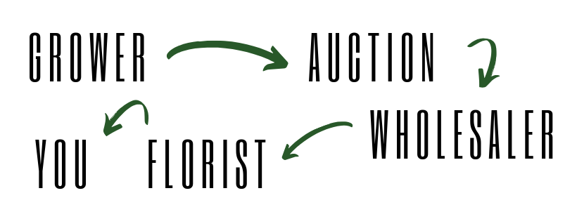 Local vs. Import. Each arrow indicates a profit-margin. Buying local flowers allows florists to cut the auction and the wholesaler, reducing costs and supporting Victoria flower farmers! — Botanic Creative