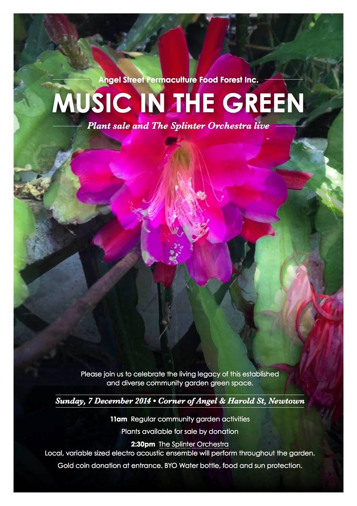 music in the green - splinter.jpg