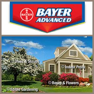 Bayer Advanced