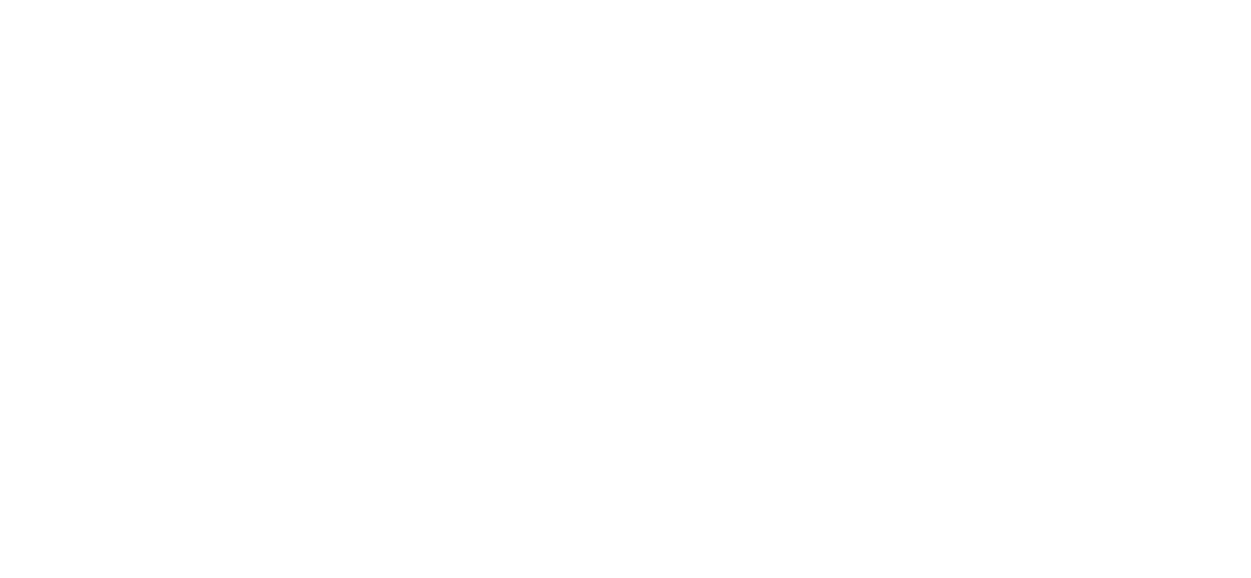 Branded Youth Text White.png