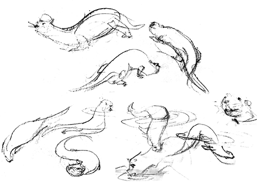 Zoo_Otter.jpg