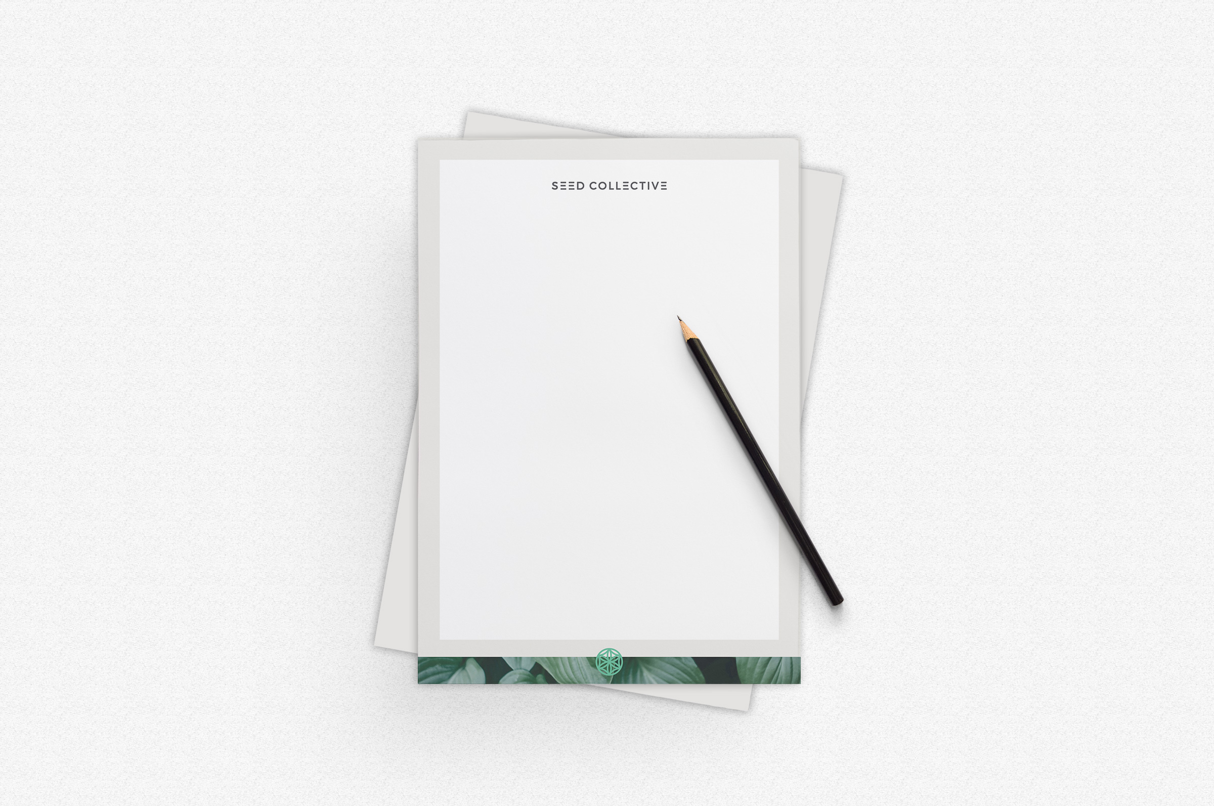 00_Seed_Collective_Letterhead_by_Foster.jpg