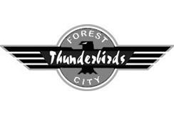 thunderbirds244x163.jpg