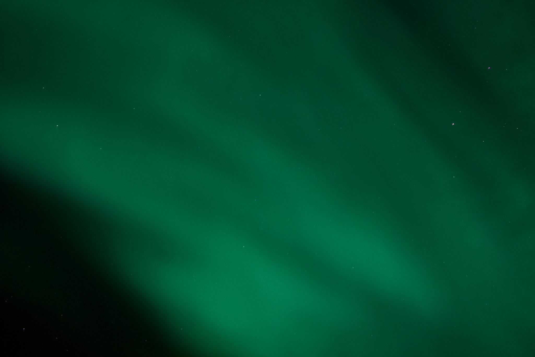 DSC_0226-2.jpg