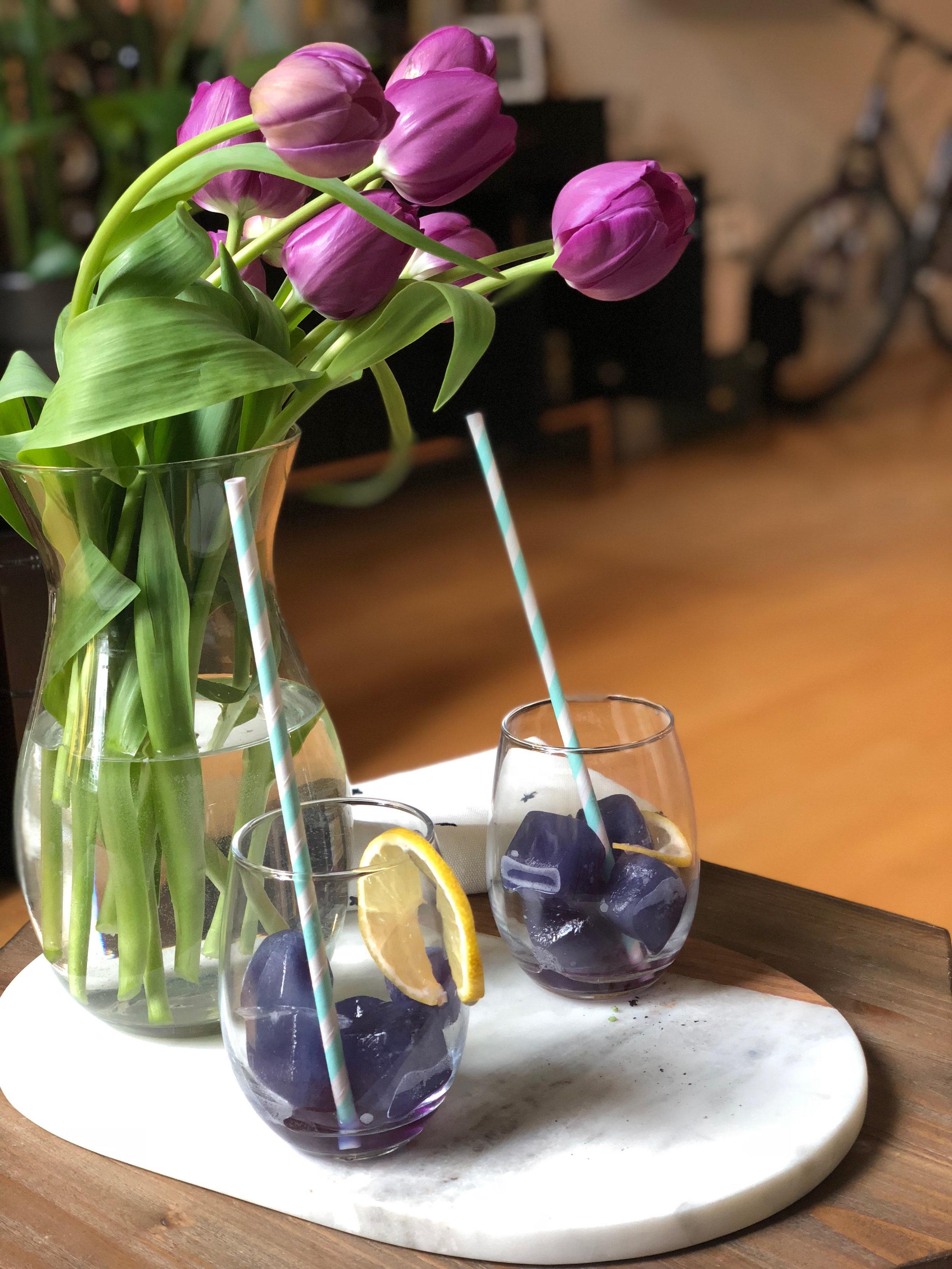 blue orchid 2.jpg