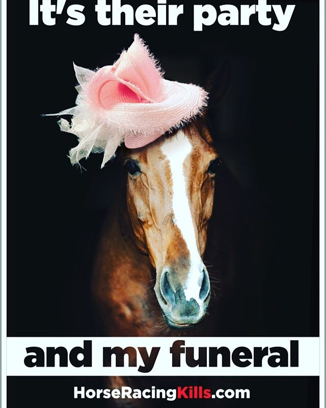 Please, say NUP to the Melbourne Cup tomorrow! Race horses - and horses of any description - deserve kindness and compassion. They are highly intelligent creatures and their lives are precious. If you care about animals, please don't place bets on their lives and turn a blind eye to the cruelty of the horse racing industry. This is an industry that whips horses into submission, forces them to run until their legs break and turns them into dog meat when they are no longer useful. Be brave and speak out for these beautiful animals; say #nuptothecup!!!