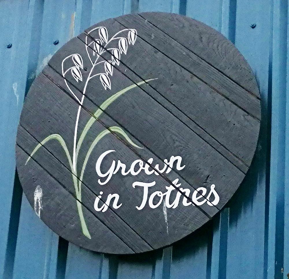 TOTNES | crédits photo : AER