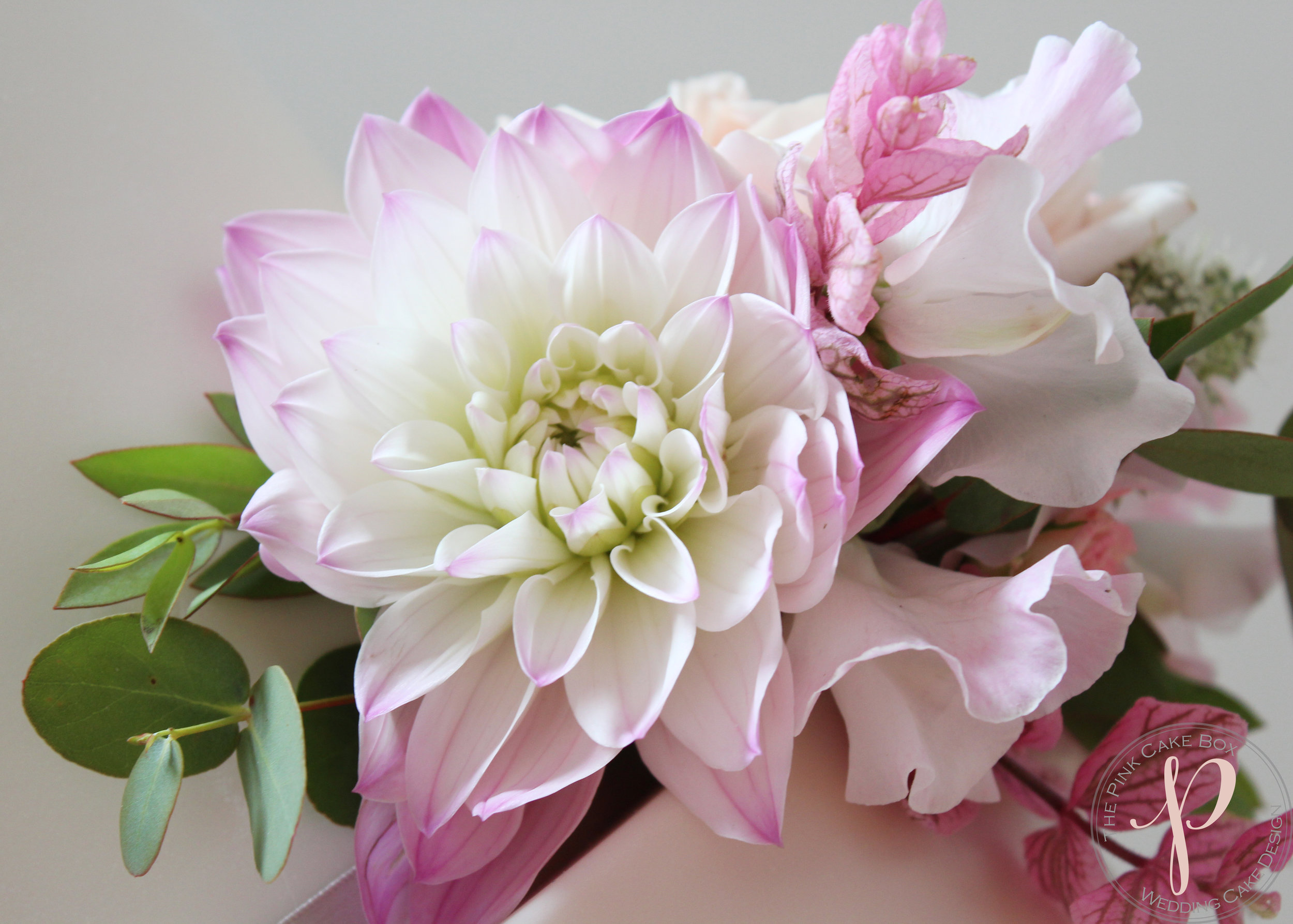 dahlia blush wedding cake.jpg