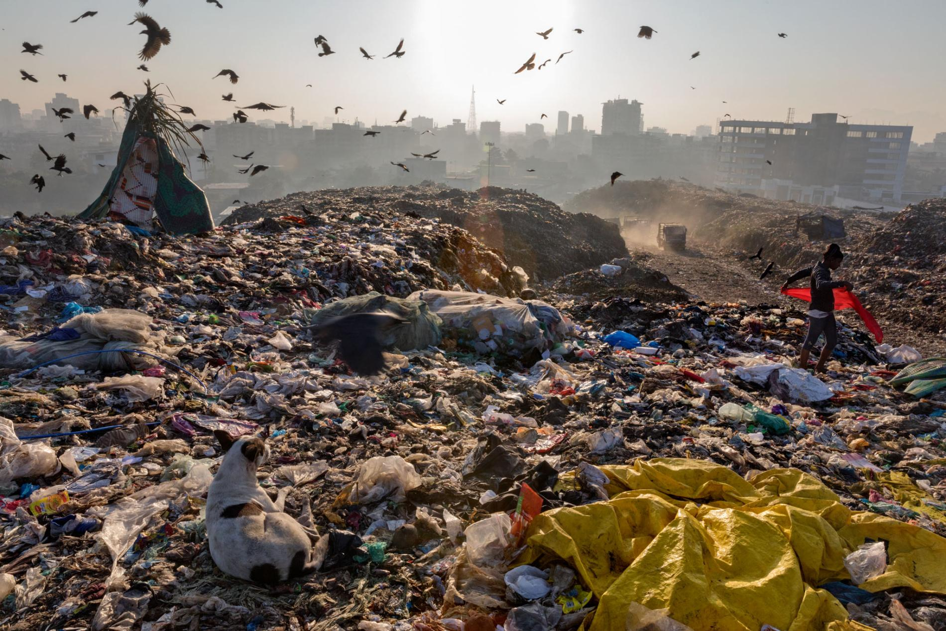 Photo from National Geographic:  https://www.nationalgeographic.com/magazine/2018/06/plastic-planet-waste-pollution-trash-crisis/