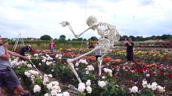 skeleton_08.jpg