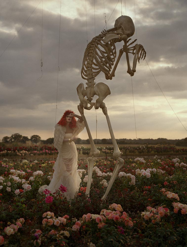 tim_walker_skeleton.jpg
