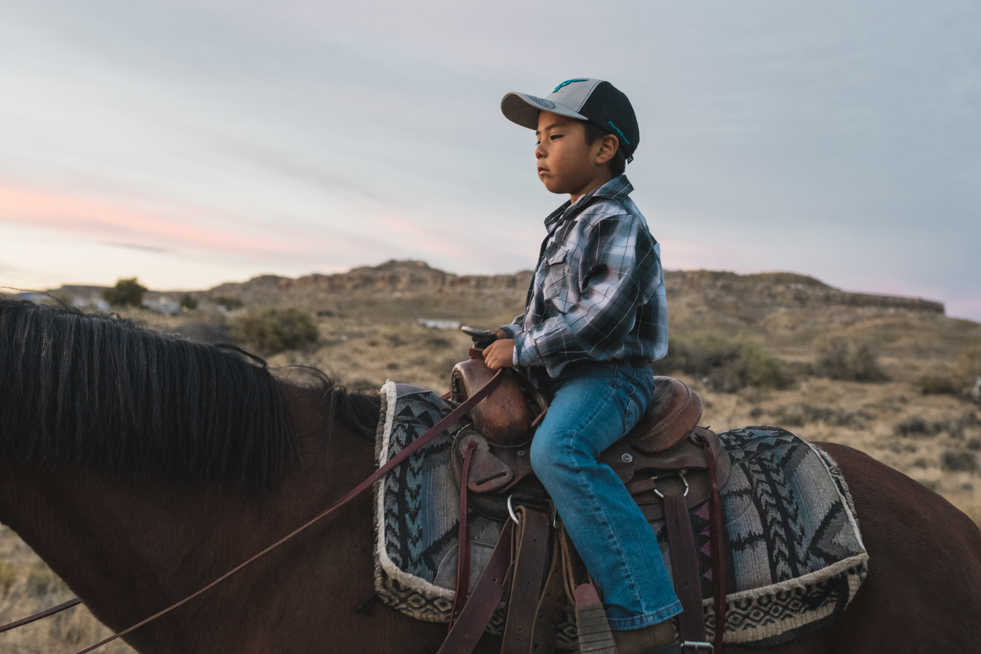 In the soft purple of twilight, the boy is dwarfed by the horse, the darkening sky. But he is not afraid; his family walks beside him. -