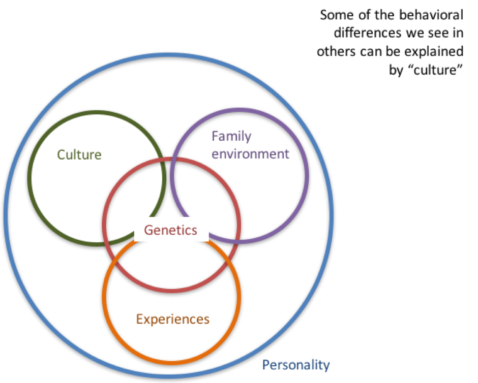 Link between Culture & Personality.png