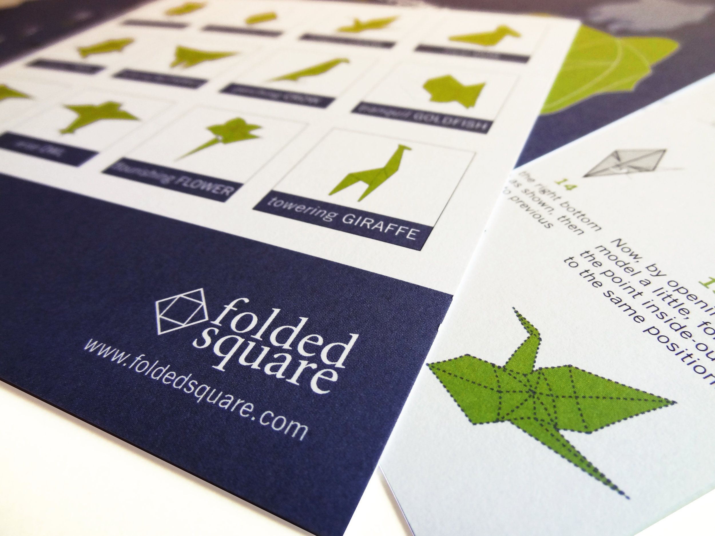 Animal Modelling Kits - Innovative fully-illustrated Origami modelling gift sets, made with sustainably sourced, FSC-certifed paper