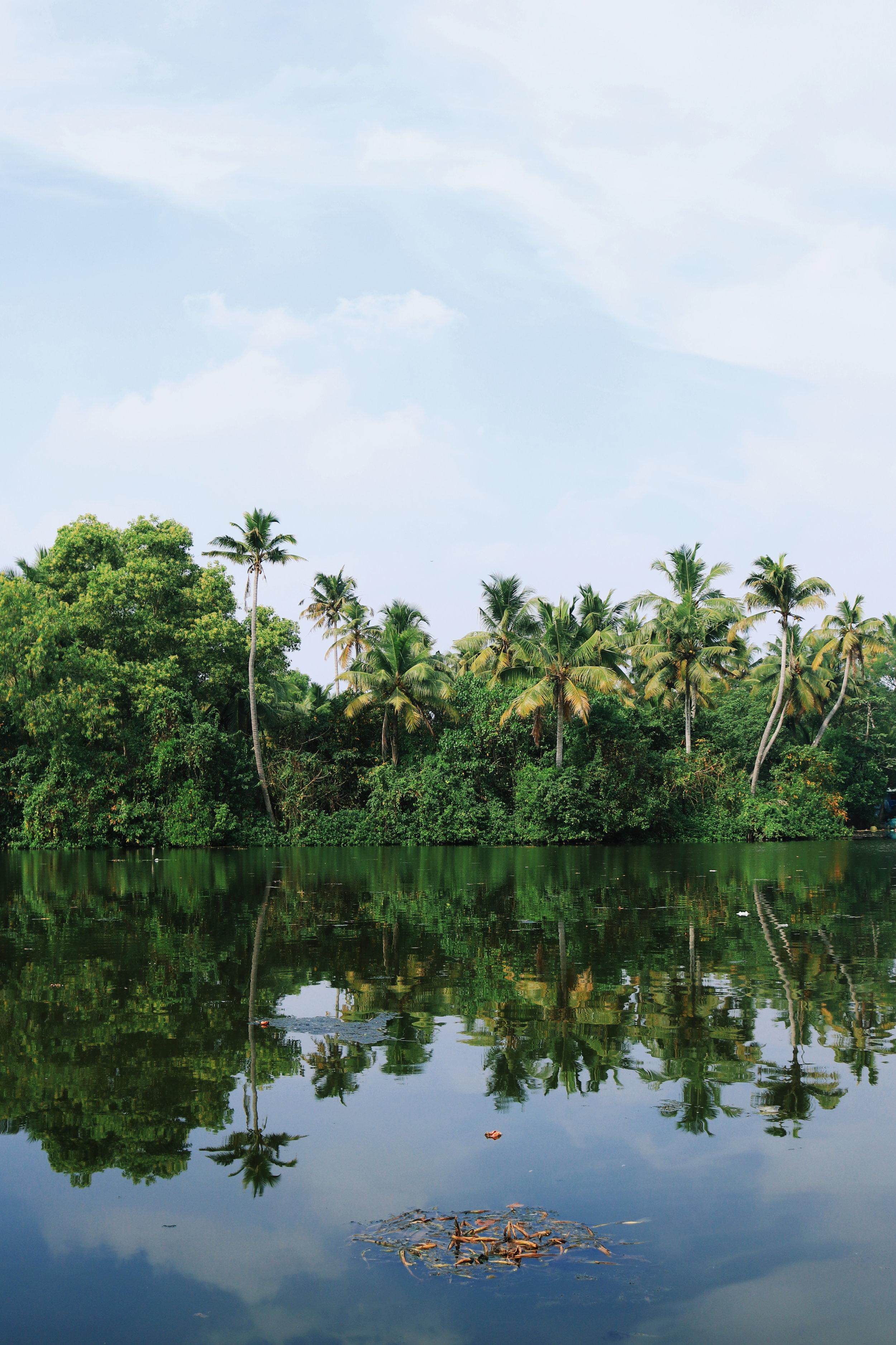 Kochi - India ~