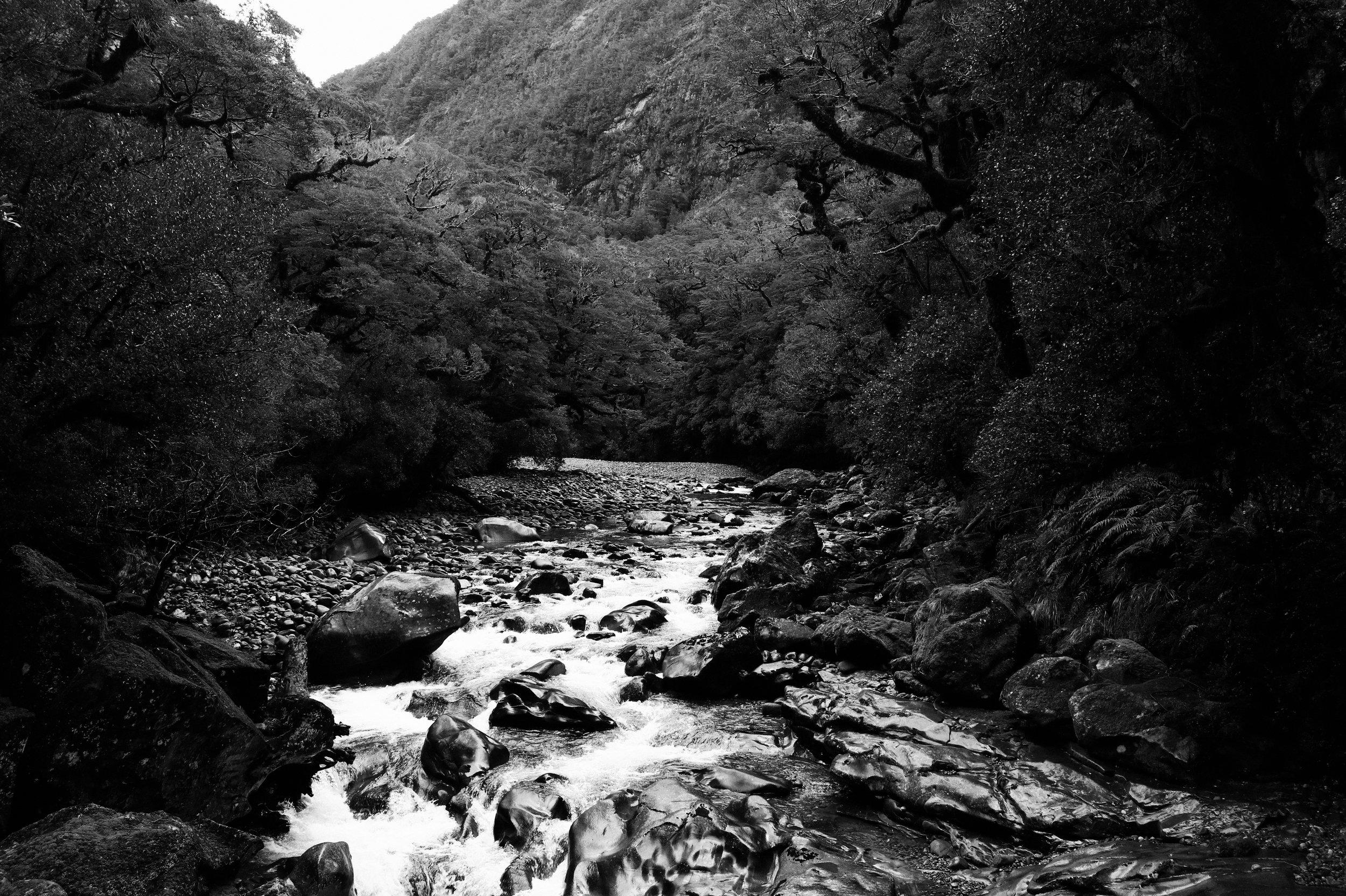 Franz Josef - New Zealand ~