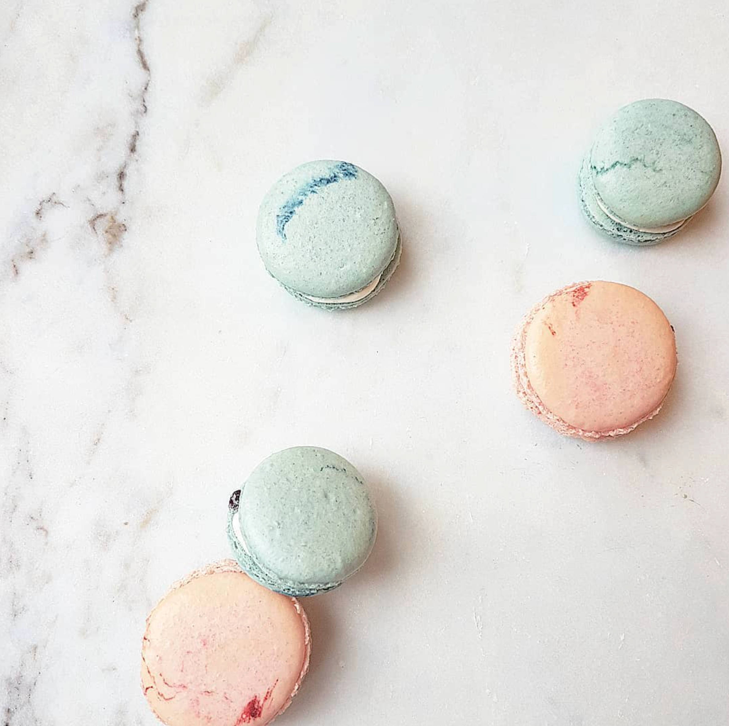 DOTTY ROSE CAKE DESIGN MACARONS.png