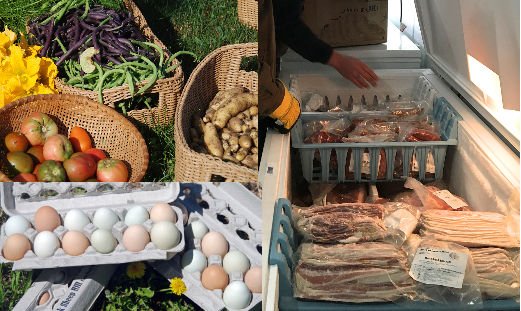 Produce and Meats - What we sell at the farm!