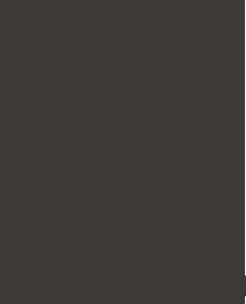 Copy of 94 FM The Fish