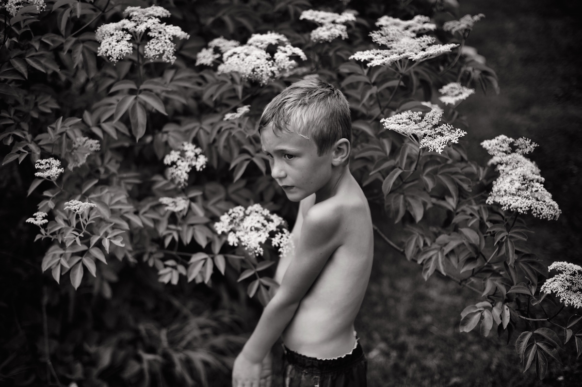 AmongTheElderflowers.jpg