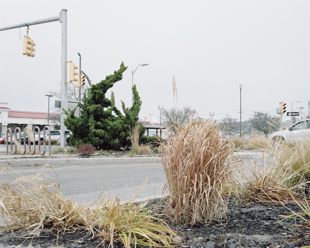 Sanghyuk Yoon_Urban Landscape-3.jpg