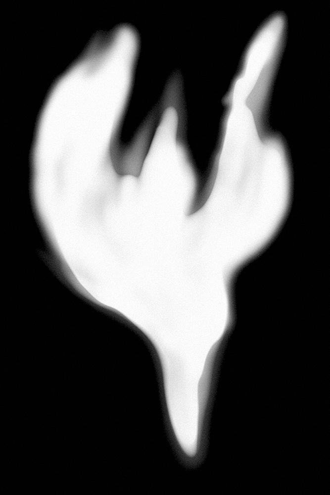 Elina Julin_BIRD series Ghosts_010.jpg