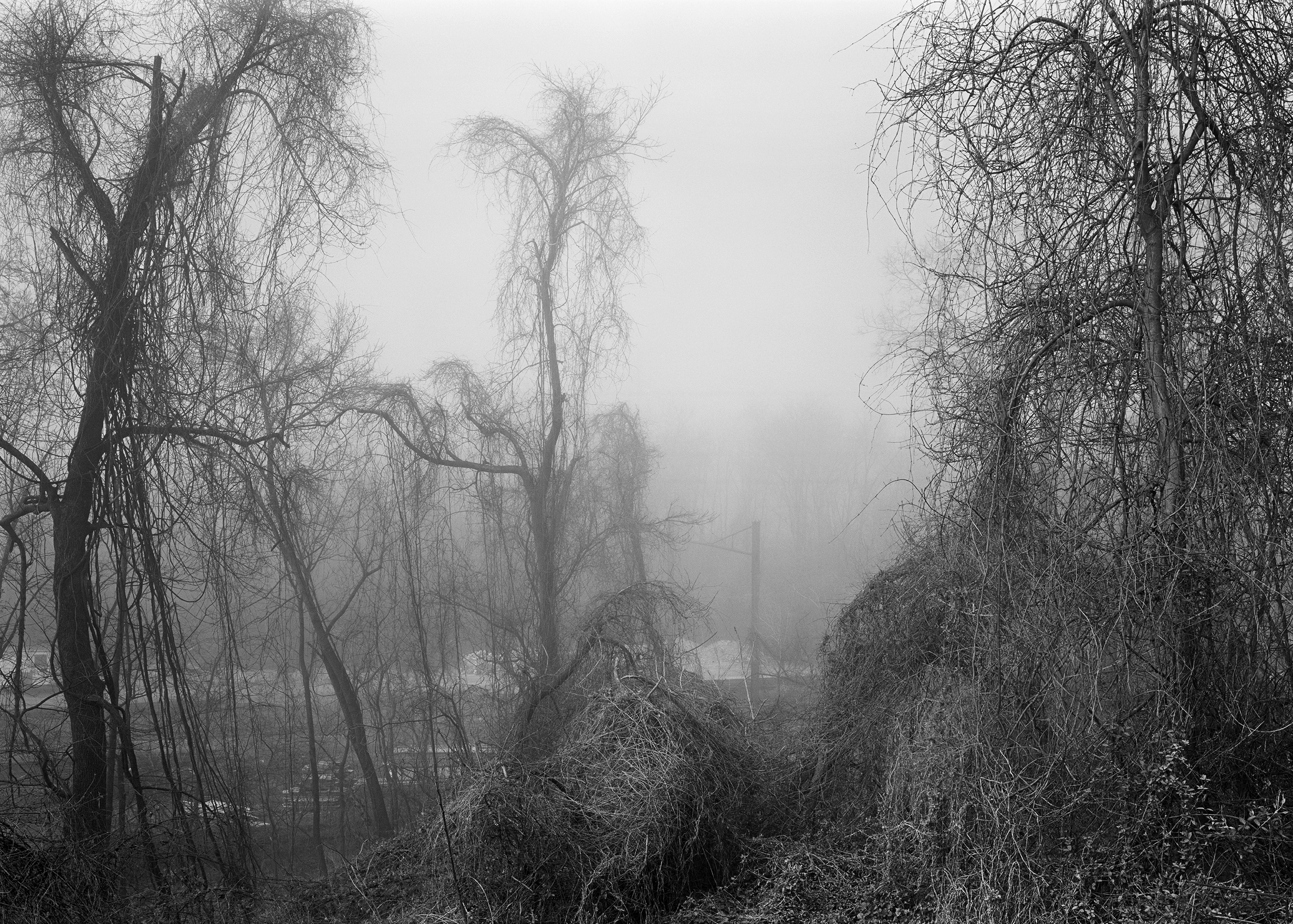 View from Enola Low Grade Line, Columbia, Pennsylvania