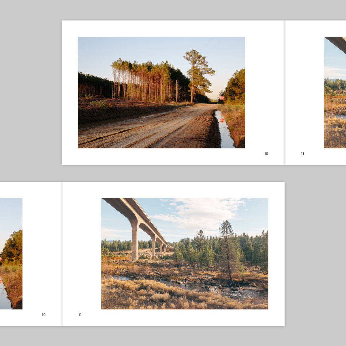 The-Vernacular-of-Landscape-Spread-06.jpg