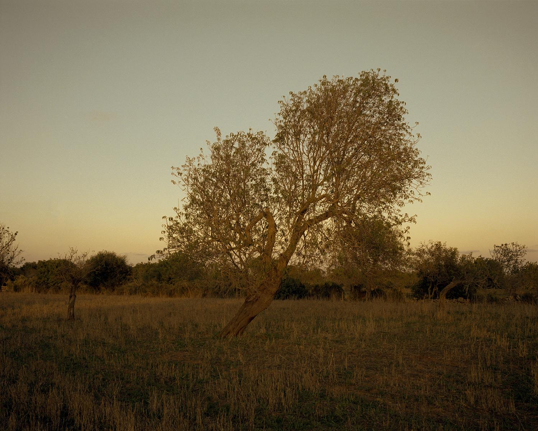 Michal_Narozny_Islands_Mallorca_6.jpg