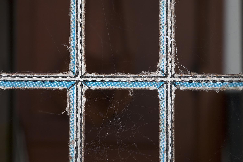 10_Spiders.jpg