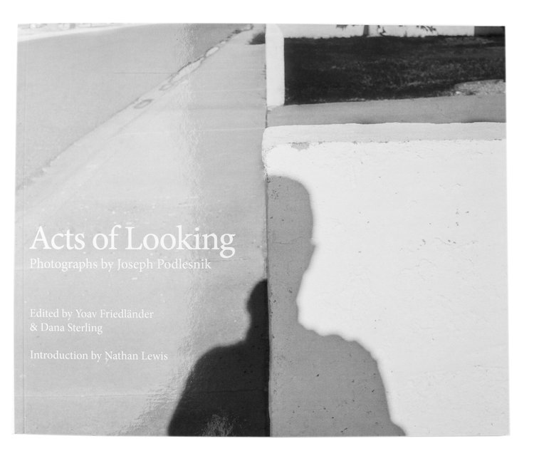 ACTS OF LOOKING