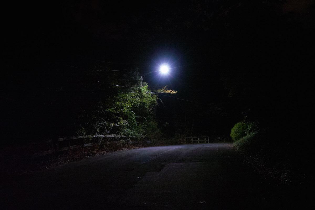 Split_Tree_31_RoadatNight.jpeg