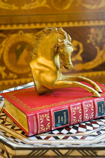 Golden horse above thick book