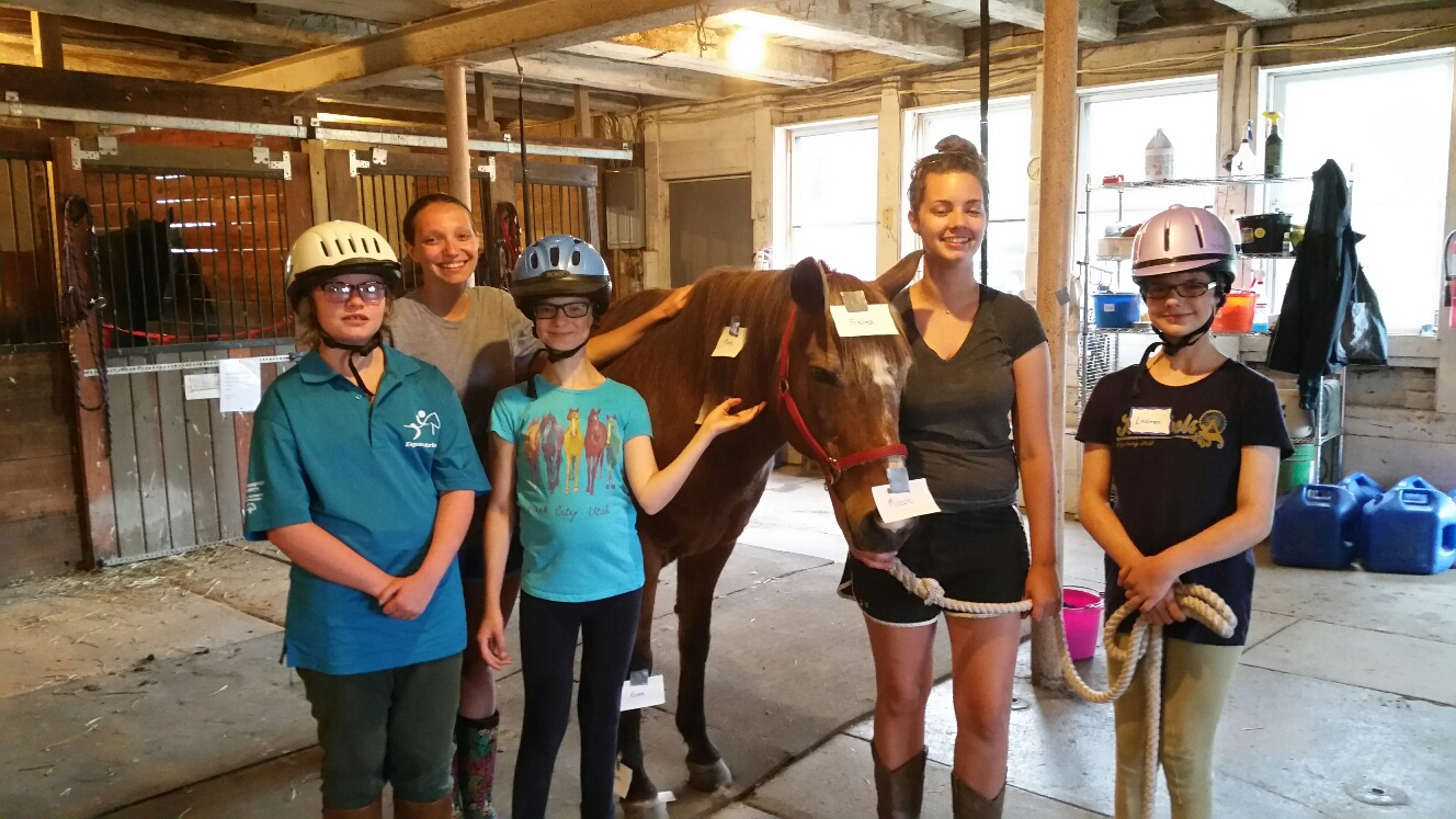 equine assisted learning 11.jpg