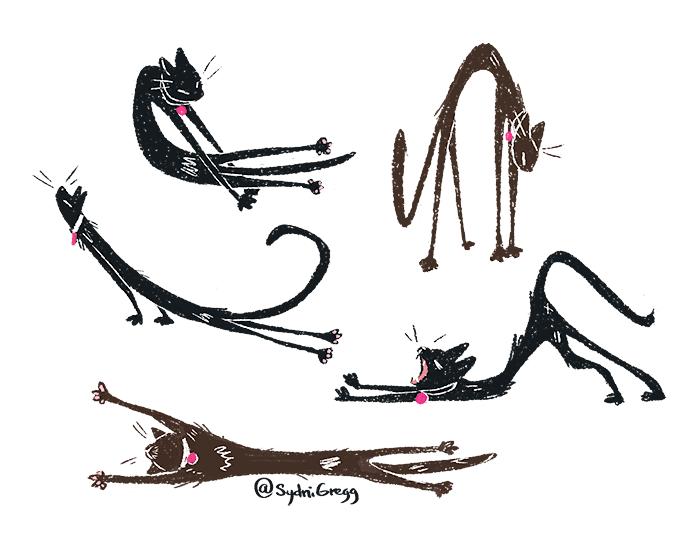 KittyStretches_SydniGregg-01.png
