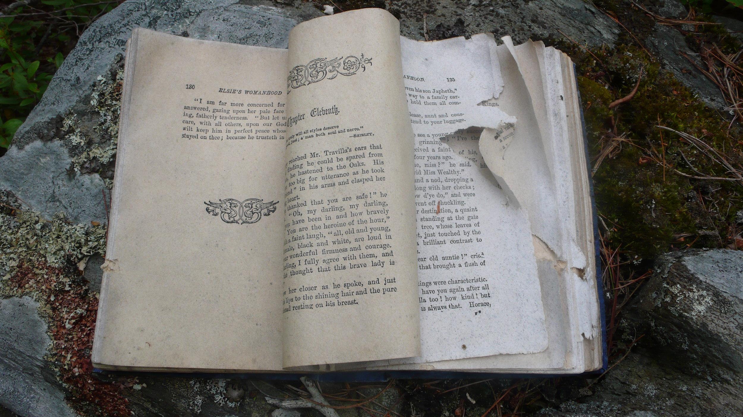 decomposing: Elsie's Womanhood  / found book / installation 2009 / image 2009