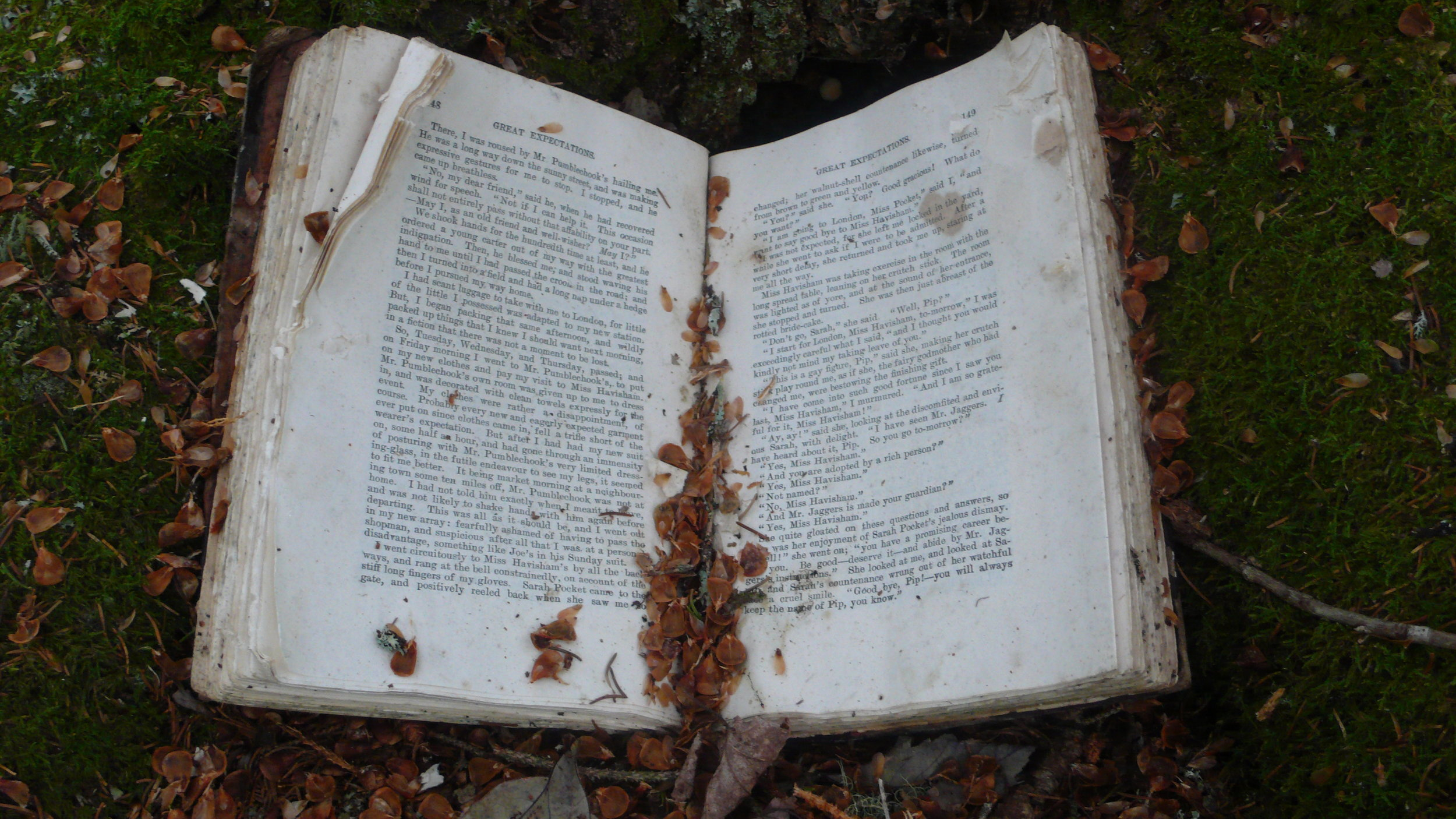 decomposing: Great Expectation  / found book / installation 2009 /image 2009