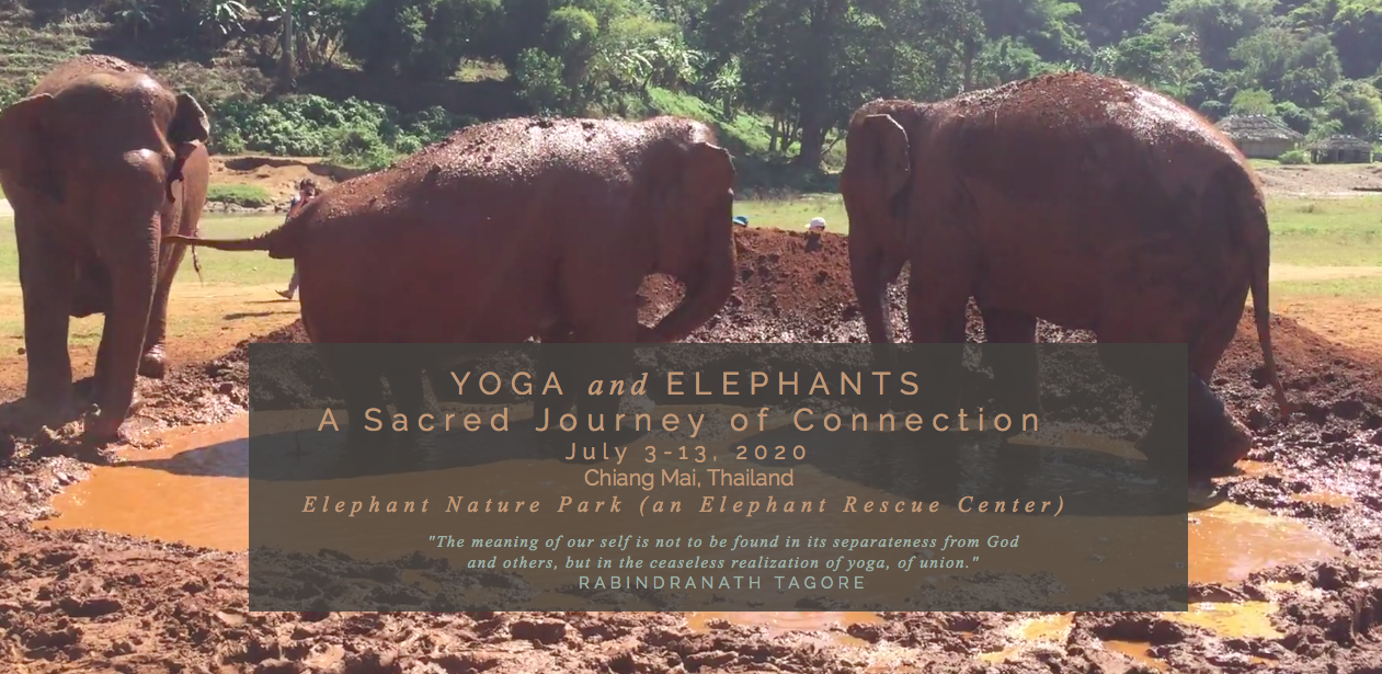 Yoga & Elephants: Thailand Retreat - July 3-13, 2020Join us for 10 life changing days in close contact with one of the most emotionally intelligent mammals on earth, the Asian elephant.Guided by the loving hearts and hands of Leah Knippel, Yoga Instructor/Spiritual Companion, and Dr. Jodi Ashbrook, Yoga Instructor/Wellness Coach. Your journey will begin in the in the ancient city of Chiang Mai wandering through its temples and markets while getting a taste of Thai food and culture with options to learn Thai Massage or receive a massage. Our journey will continue as we explore the charming countryside of Northern Thailand while staying and volunteering at the award winning Elephant Nature Park.You will be given the tools to relax, rejuvenate, refocus, and reach out to your truest self, your Source, and the fellow beings crossing your life path. Our intention is that this trip becomes a gateway towards possibilities and a starting place for transformation.