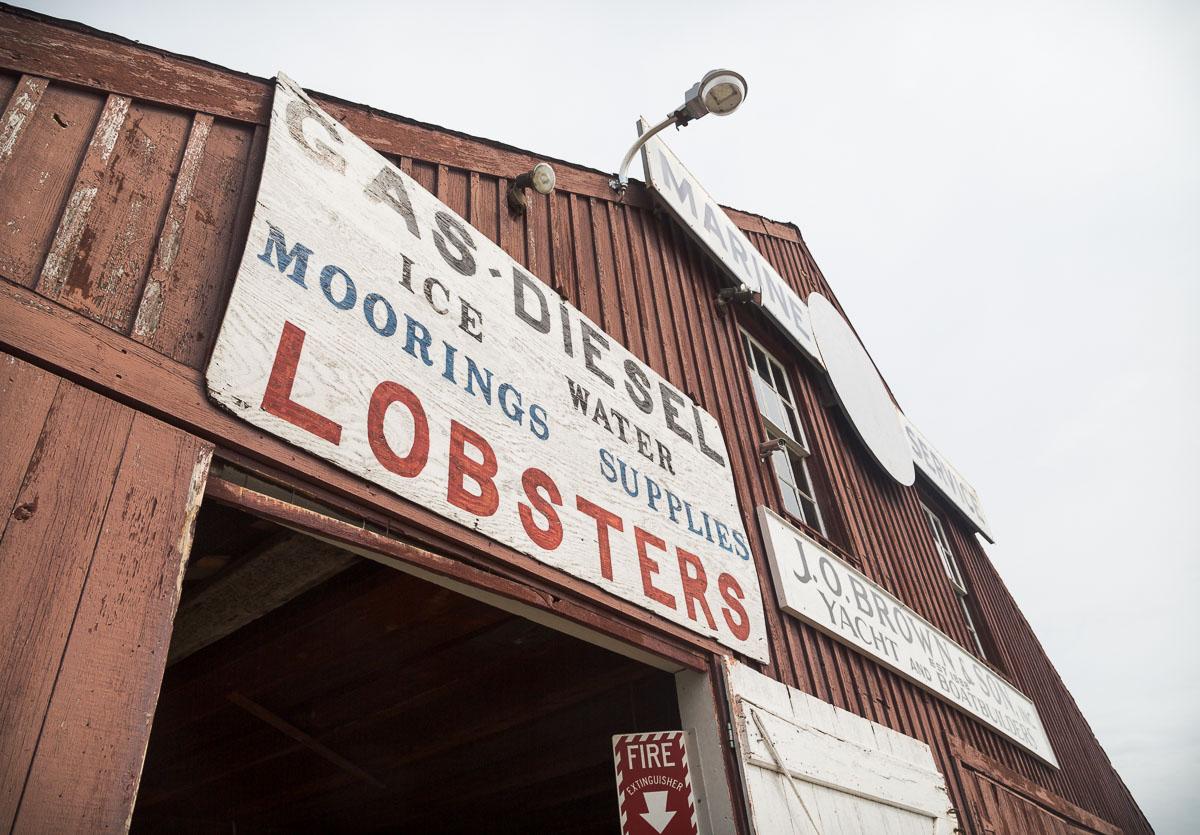 maine-lobster-north-haven-maine.jpg