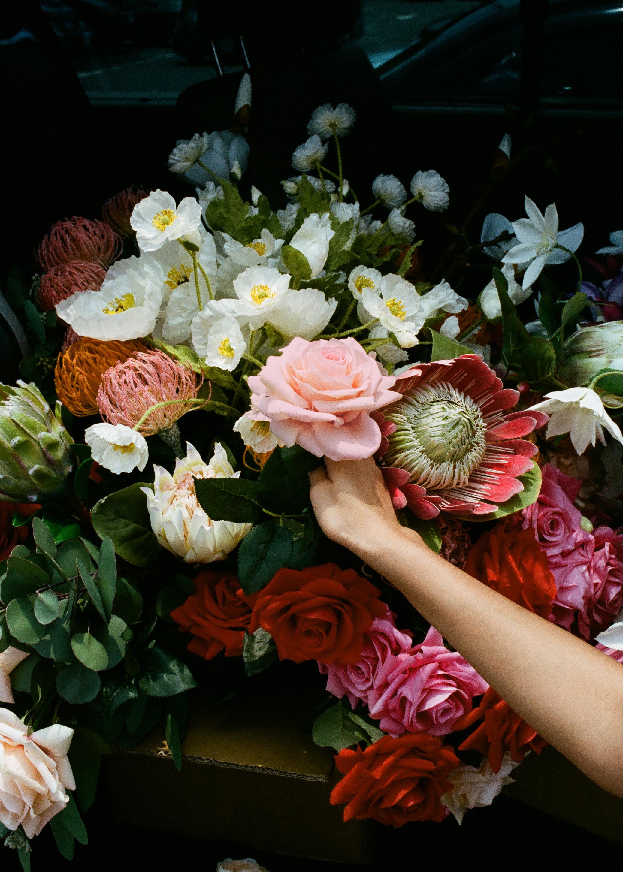 Hand-rose-5x7.jpg