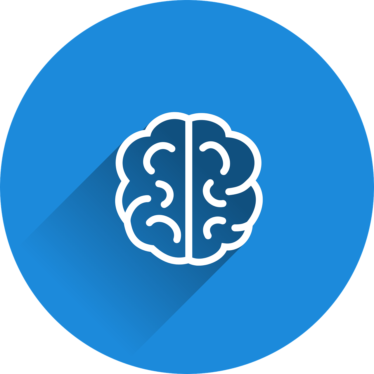 brain-2235771_1280.png
