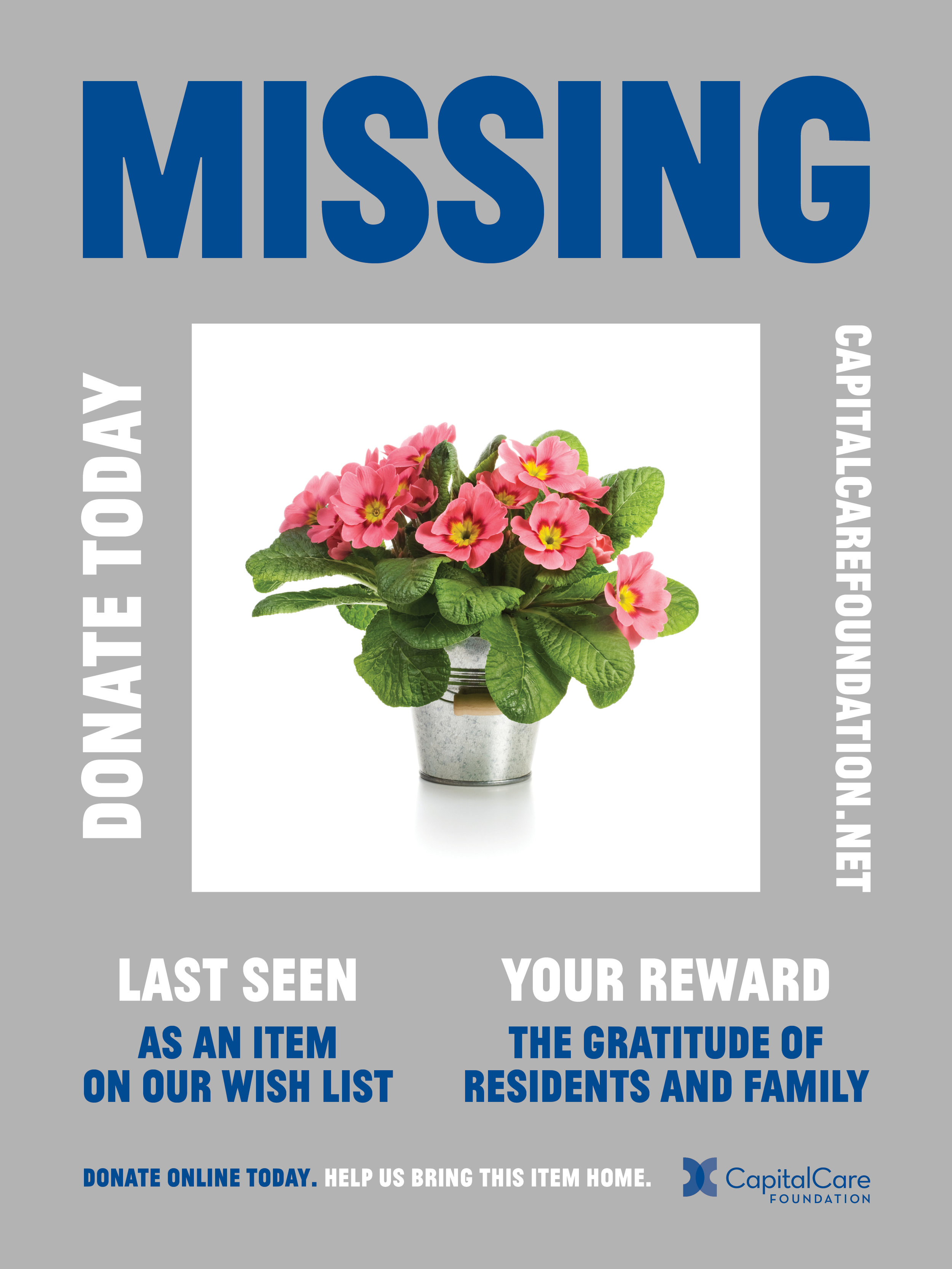CCF-Fundraising Campaign (New Posters)3.jpg