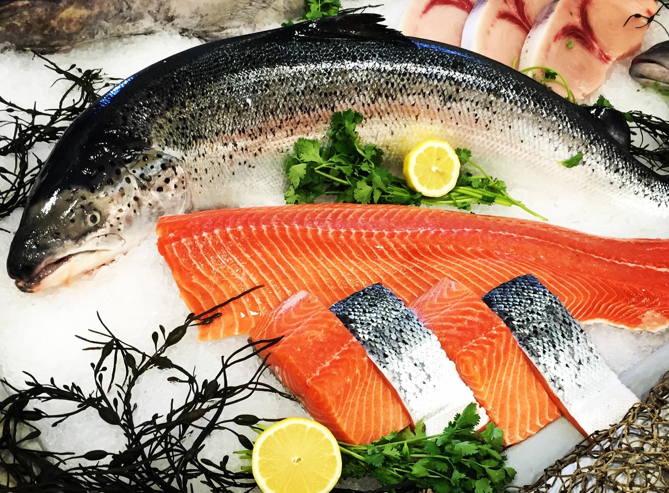 norway - canada - scotland - chile - faroe islands - atlantic salmon