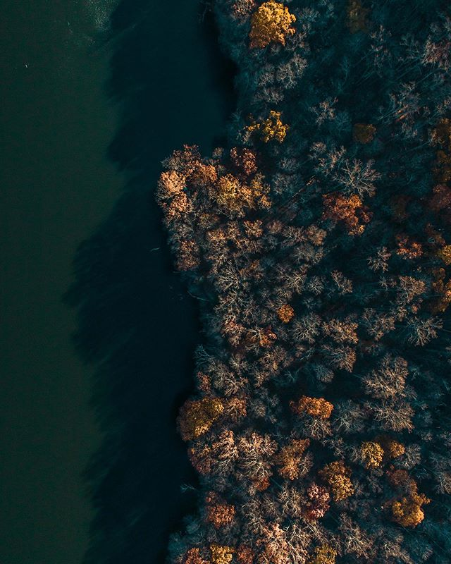 Fleeting foliage #CapturePerfection @polarpro  @djiglobal