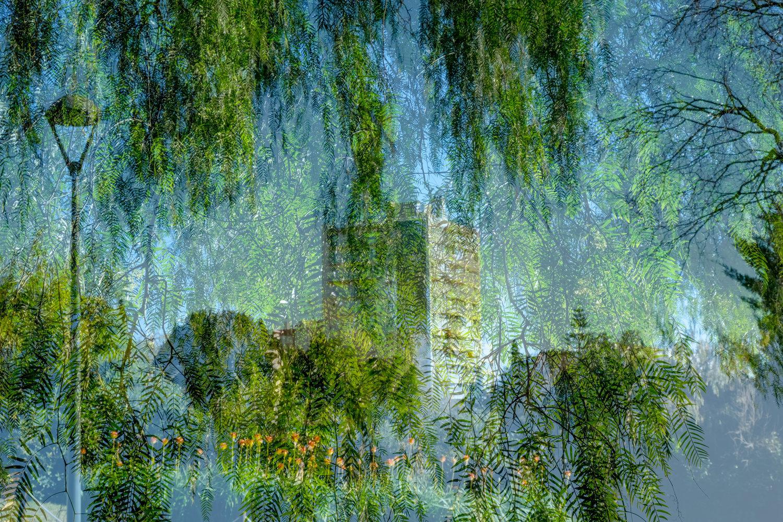 MI PROPIO PARQUE - Esta serie es un espacio verde imaginario a partir de imágenes de parques reales de la ciudad. Estas son del Parque Cervantes. Esta serie forma parte de la idea que propondríamos a MERLIN. Es una serie perfectamente replicable con los parques referentes para cada ubicación.