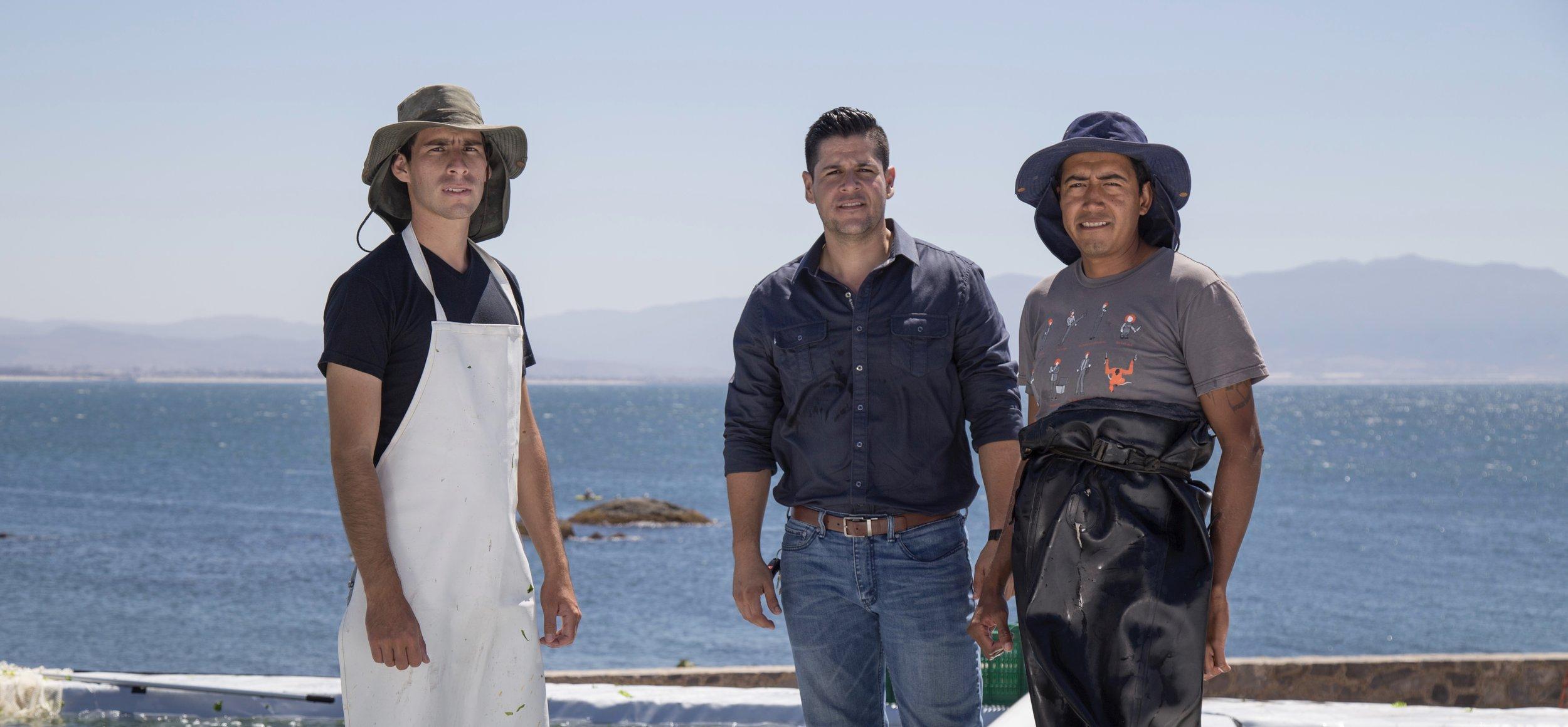 Seaweed Farmers.jpg